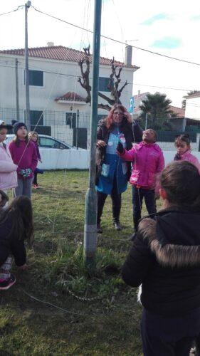 Construção da estrutura da árvore com arame