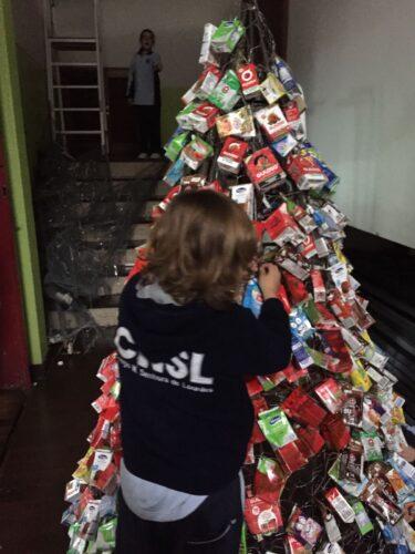 Alunos de diferentes ciclos a colocarem os pacotes na árvore.