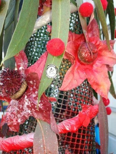 Pormenor folhas de eucalipto e ácer, pompons