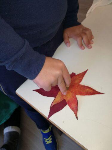 Os nossos meninos da UEE, entusiasmaram-se com as folhas amarelas e vermelhas, com cola de tubo, uniram-nas.