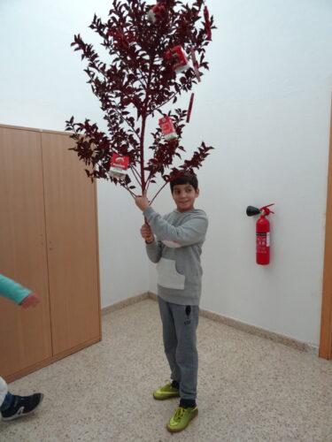 O Francisco ofereceu um ramo de azevinho do seu jardim que pintou de vermelho